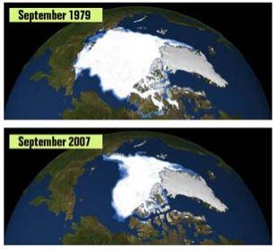 Arktikas ledus